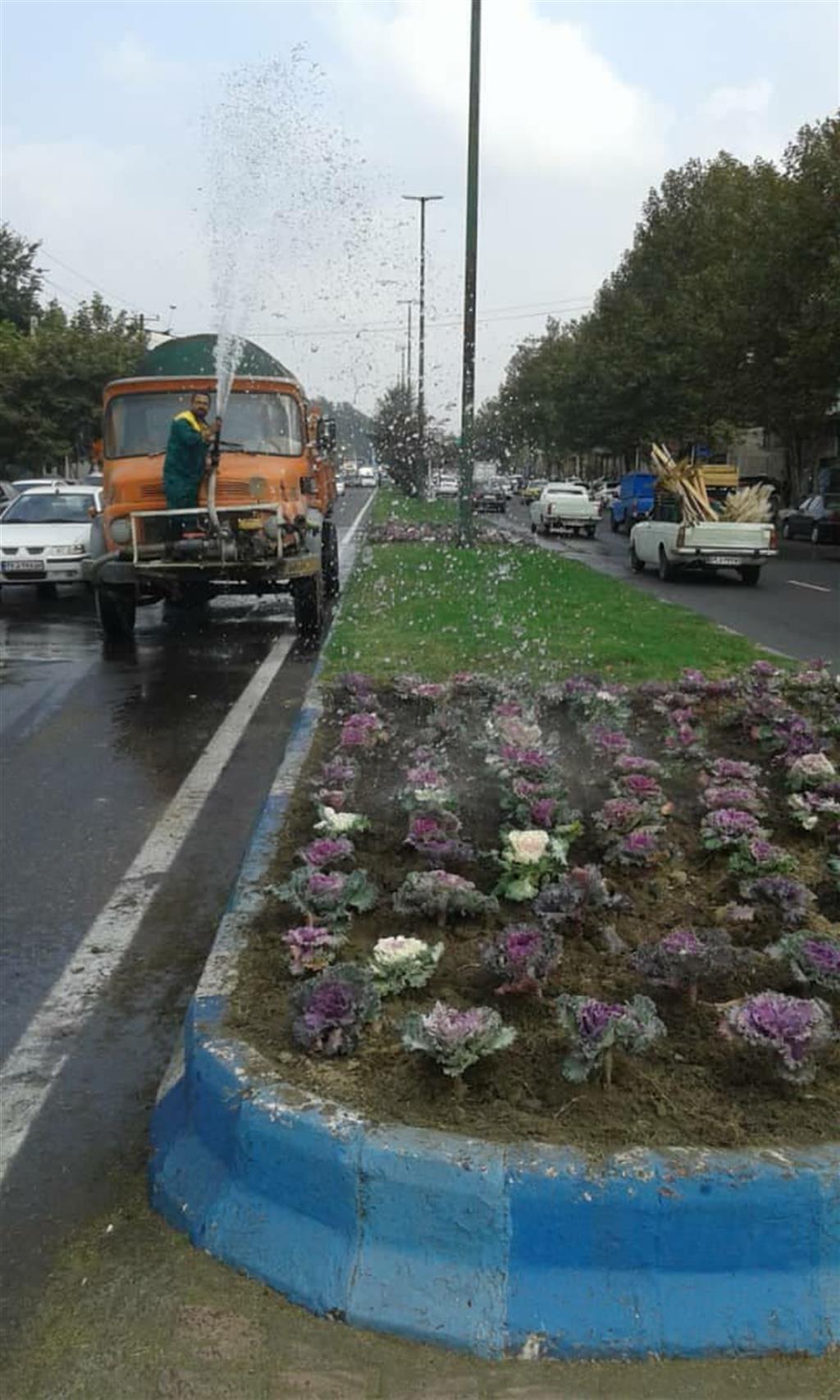 hgmc5 - گزارش تصویری اقدامات سازمان سیما،منظر و فضای سبز شهری شهرداری رشت