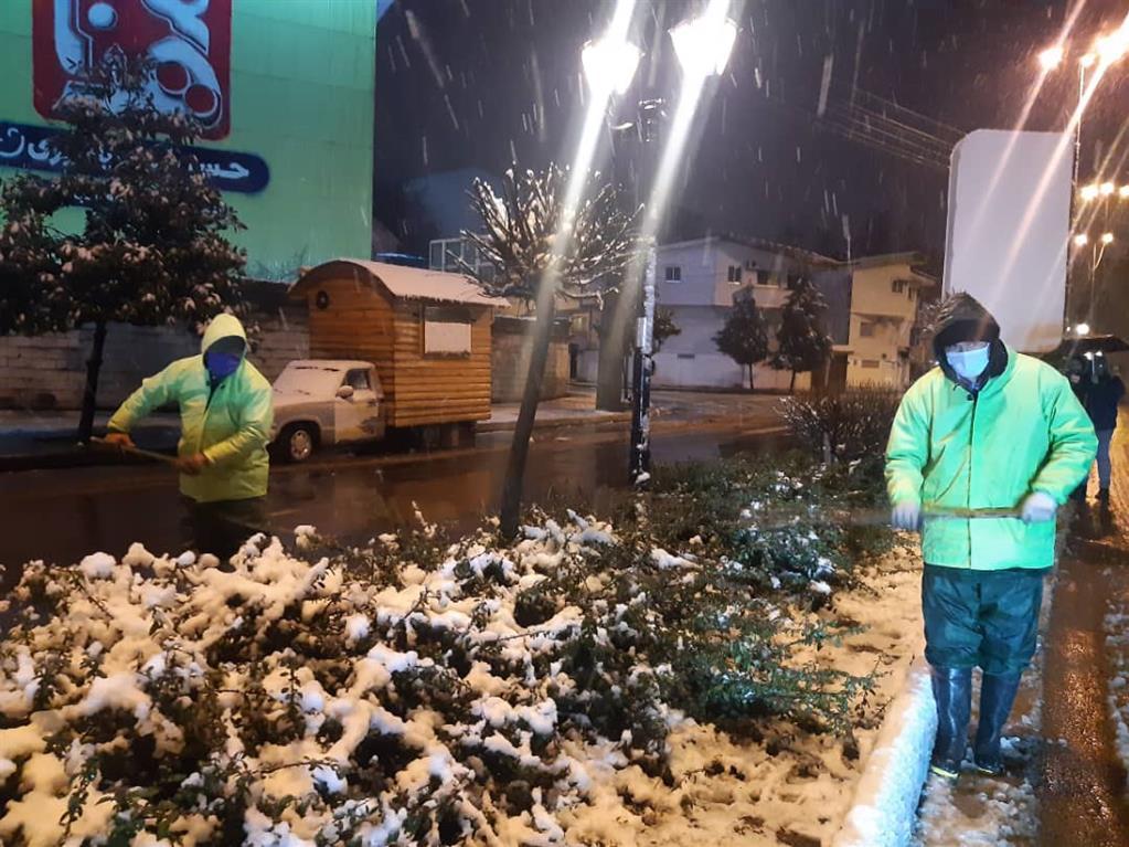 IMG 20210121 WA0023 - عملیات اجرایی برف تکانی درختان توسط نیروهای فضای سبز