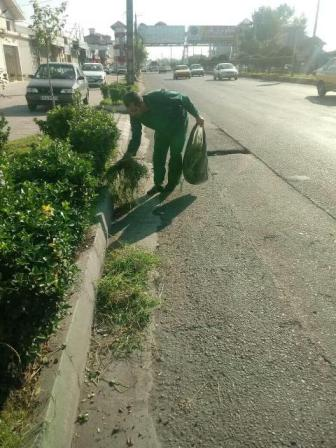 photo 2019 10 05 14 12 33 - گزارش تصویری حوزه مدیریت خدمات شهری از هفته بیست و چهارم طرح پاکسازی هفتگی محلات شهر رشت